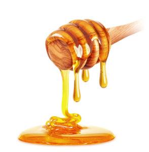 Honigmanufaktur Pfälzerwald
